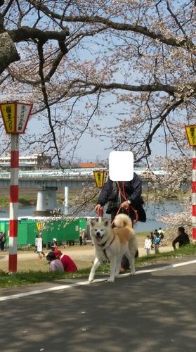 IMAG3836.jpg